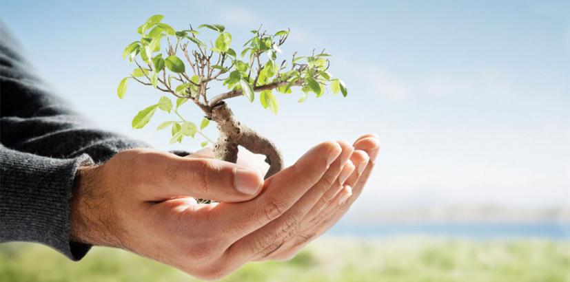 environmental-services2